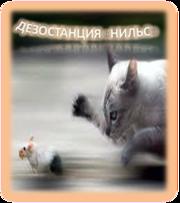 Борьба. Уничтожение мышей в Алматы и Алматинской области